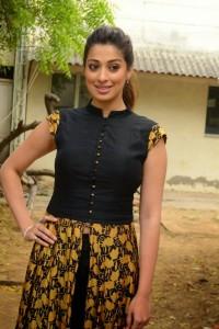 South Actress Raai Laxmi New Photos (1)
