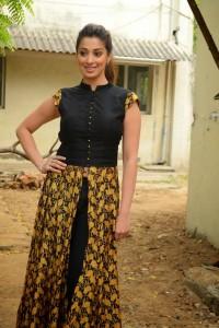 South Actress Raai Laxmi New Photos (11)