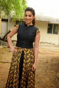 South Actress Raai Laxmi New Photos (3)