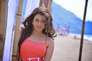 kajal_agarwal_temper_movie_new_stills (8)
